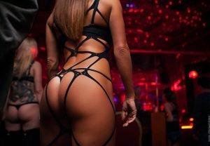 Prague Strip Club Tour girl