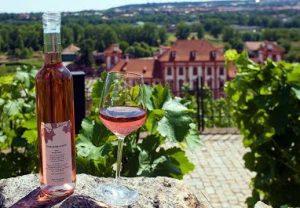 Prague Wine Tasting
